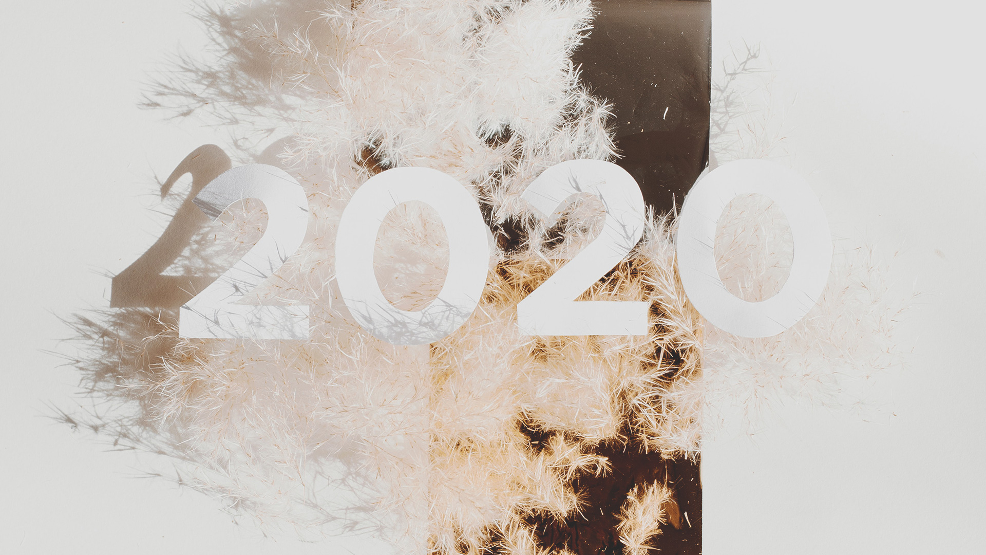 Why 2020 and 2021 Matter for You and the Rest of the World