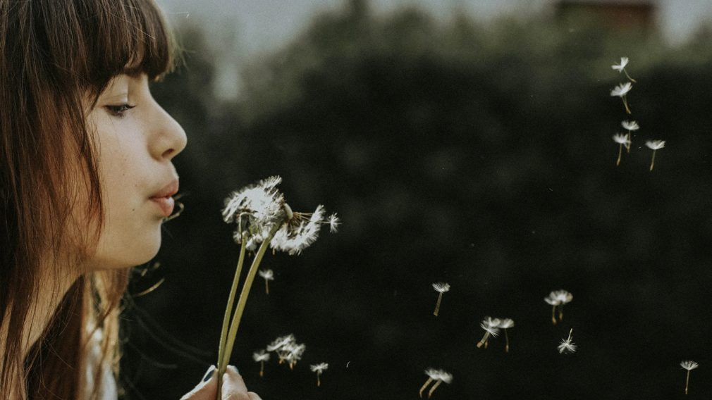 The Breath of God | Key Takeaways | Steve Brown